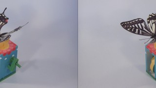 날으는 호랑나비